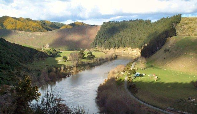 The river up stream from Wanganui